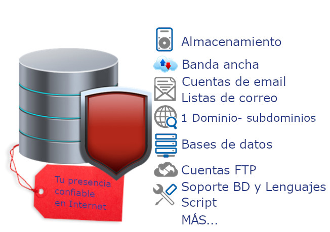 Hosting y Dominio Plan especializado